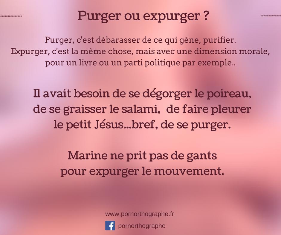 purgerexpurger