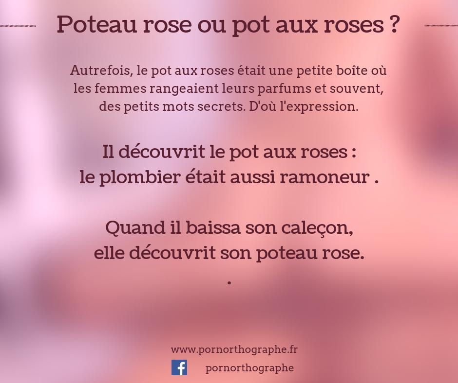 pot-aux-roses