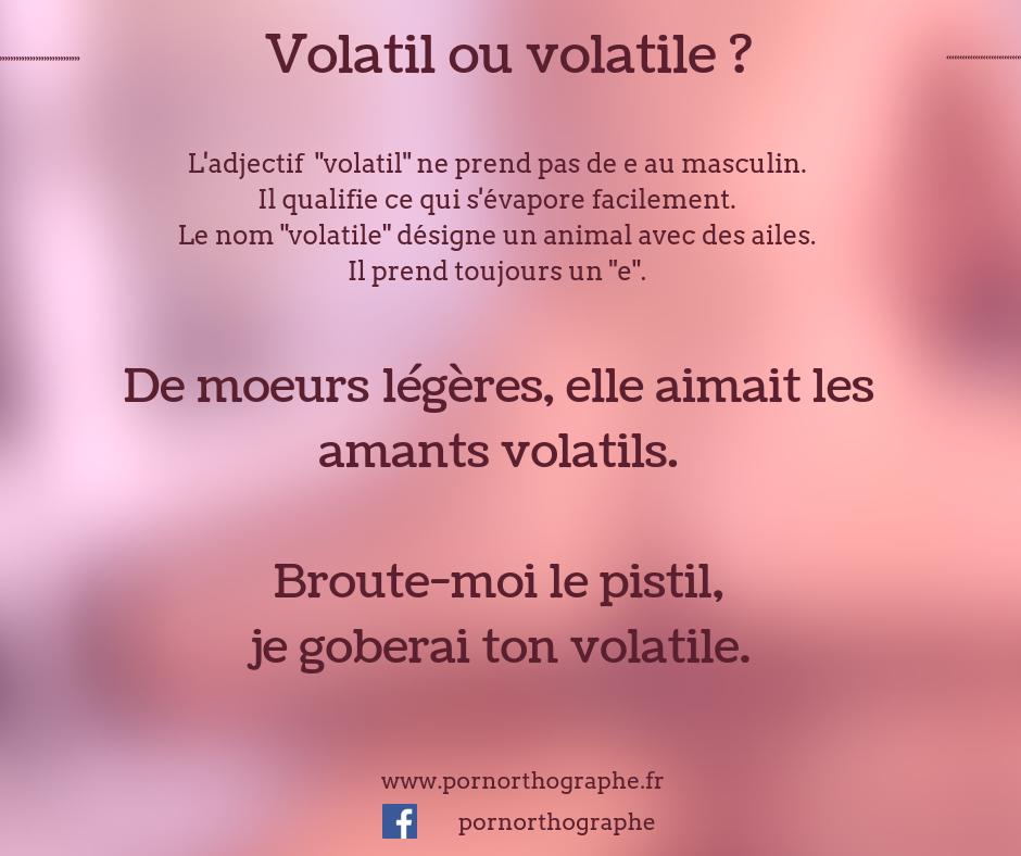 volatil ou volatile