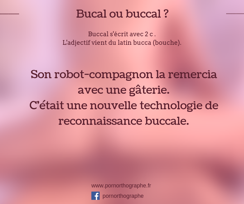 bucal ou buccal