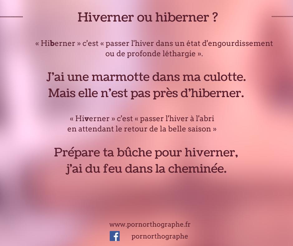 hiberner-hiverner
